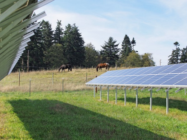 Greenbank Farm Solar