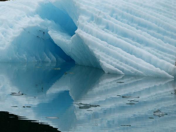 LeConte Iceberg, Alaska