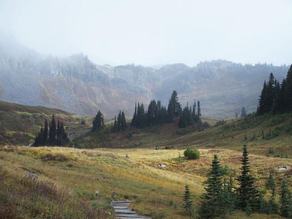 Rainier Ridges