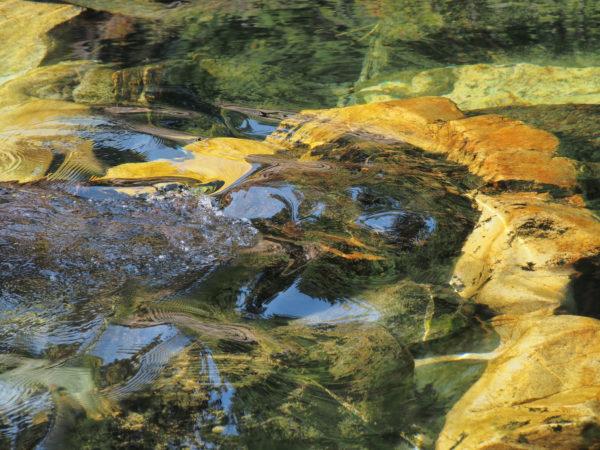 Sister Water Flowing Free