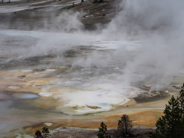 Hot Pool, Yellowstone National Park